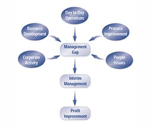 Interim Management Services