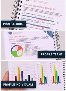 DISC Talent Insights Kona Group