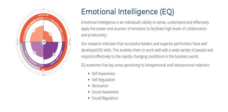 Emotional Intelligence Profile
