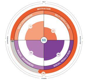 emotional intelligence wheel chart image of profile